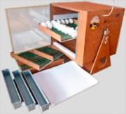 Инкубатор автоматический «Поседа М 33» — Внимательный и Сильный!